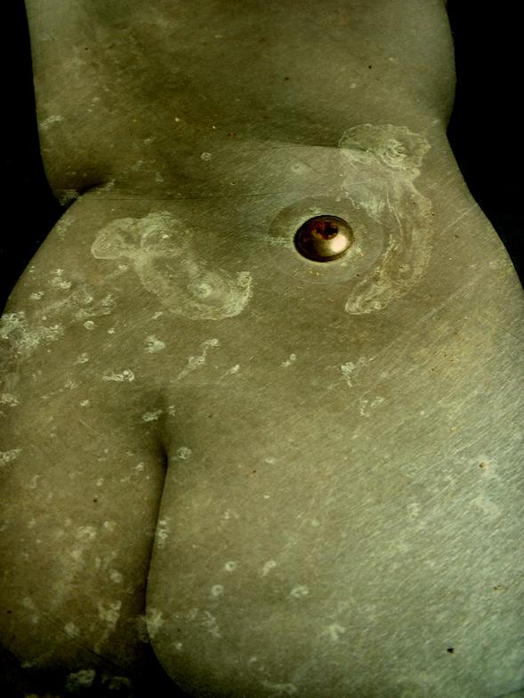 A Womans Body Series by Caryn Drexl