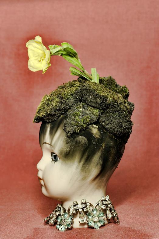 Dirt for Brains by Caryn Drexl