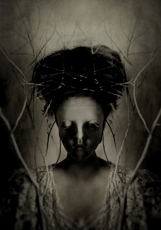 Echoes by Caryn Drexl